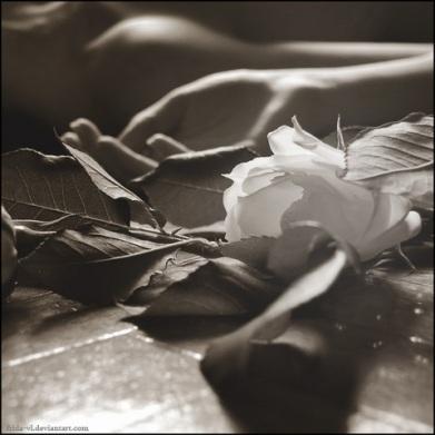fiore18