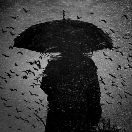 pioggia19