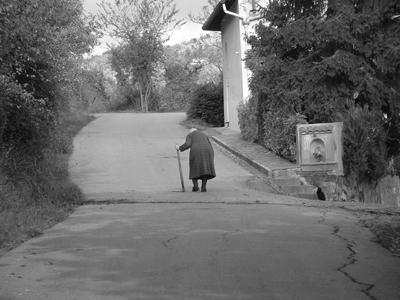 Strada della vita - by Steter