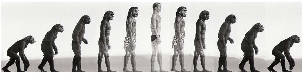 evoluzione3