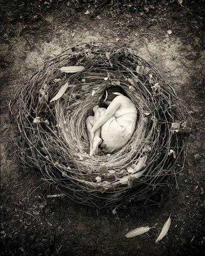 donna nido
