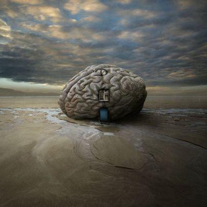 cervello24