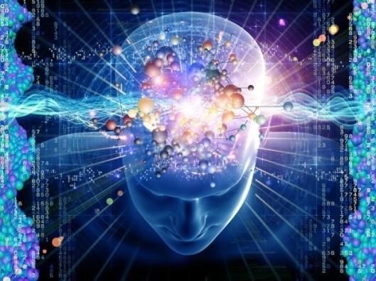cervello30.jpg