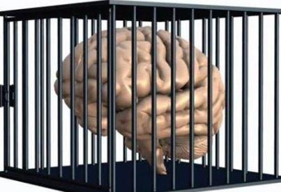 cervello39