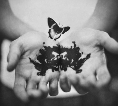 farfalla11.jpg