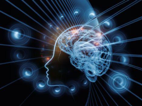 cervello37.jpg