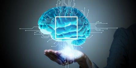 cervello38.jpg