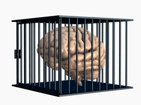 cervello49.jpg