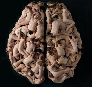 cervello3.jpg